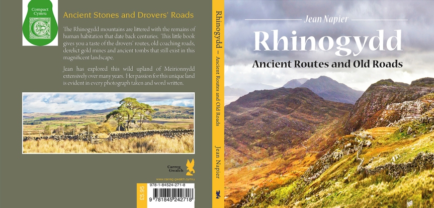 Rhinogydd Ancient Routes and Old Roads